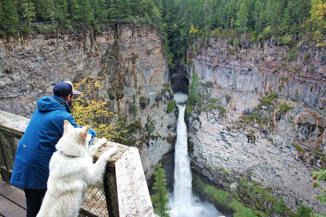 Mark and Mya's Adventure to Clearwater & Wells Gray